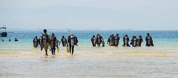 politeknik sandakan, whale shark, scuba diving, marine environment, conservation, project aware, premier padi 5 star idc dive centre, sabah travel centre, tourism industry, borneo, kota kinabalu