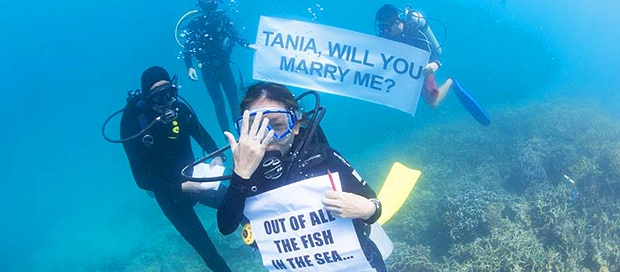 surprise underwater marriage proposal, travel and tours operator, downbelow marine and wildlife adventures, tunku abdul rahman marine park, padi instructors, climbing mount kinabalu, resident platinum padi course director, going global, sabah travel centre