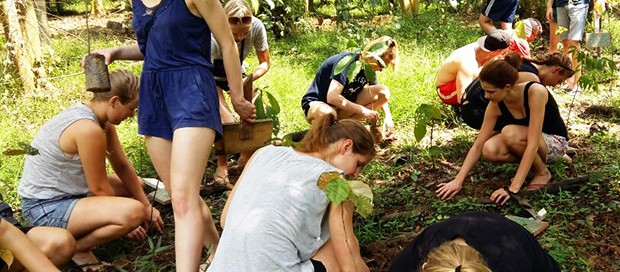 tree planting, sabah, borneo, kota kinabalu, kinabatangan river, conservation, bilit village, sandakan, rainforest, adventure group, travel, mount kinabalu, lows peak, world heritage site, unesco designated, mountain climbing, wildlife safari,