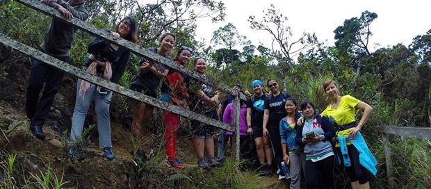 mesilau, nepenthes trail, tours and travel, downbelow marine and wildlife adventures, mount kinabalu, kinabalu national park, crocker range,