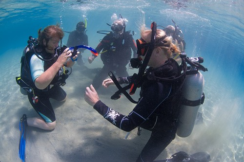 PADI Open Water Scuba Instructor Course