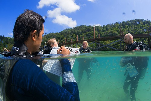 Take advantage of our PROMOTIONALPADI Divemaster & PADI IDC Course Combo. This course includes the full PADI Divemaster & PADI Instructor Development Course plus the Emergency First Response Instructor Course which is a pre-requisite to becoming a PADI Instructor.