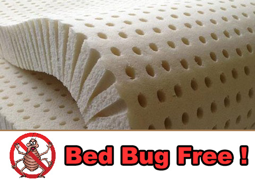 Our Mattresses Are 100% Latex and Bed Bug Free !