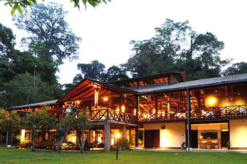 Borneo Rainforest Lodge - Danum Valley