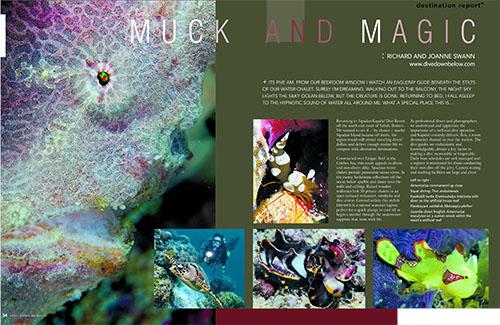 Sport Diving Magazine Issue132