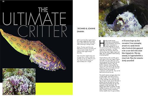 Sport Diving Magazine Issue134