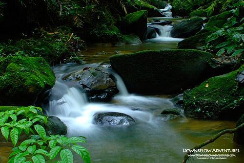 Mahua Waterfall Tambunan