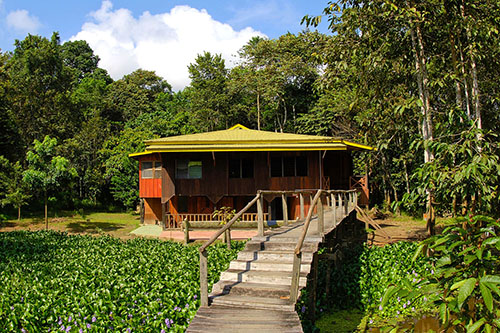 Kinabatangan River Expedition Lodge