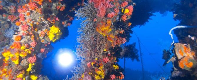 Remembering World War II Usukan Bay Shipwrecks.