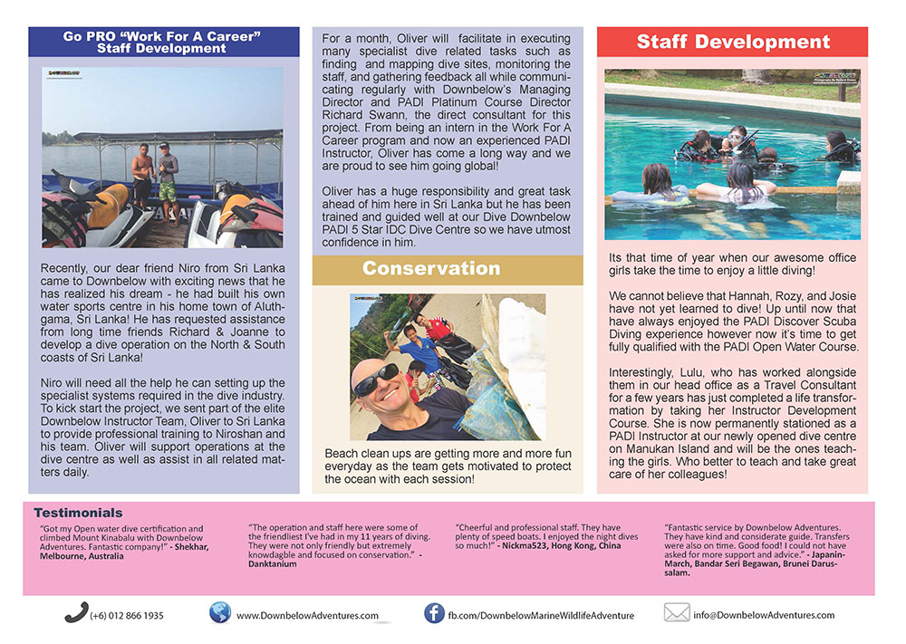 January 2017 Monthly Newsletter