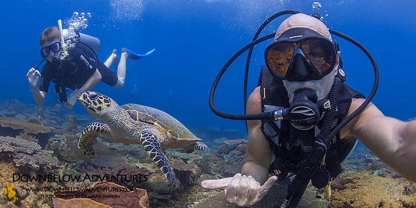 How to Become a PADI Scuba Instructor