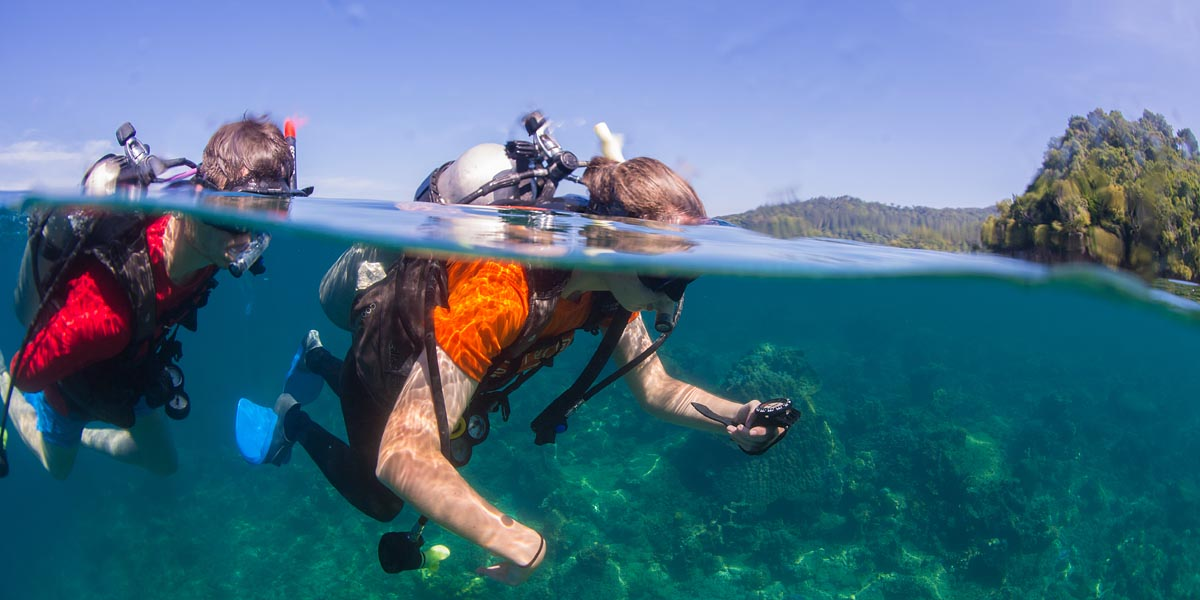 Gap Year Scuba Diving Internship