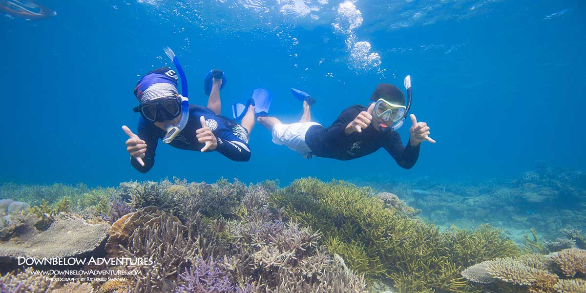 Enjoy Some of the Best Coral Sites