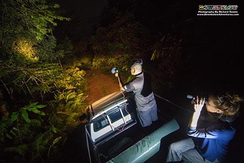 4D3N Tabin Wildlife Experience