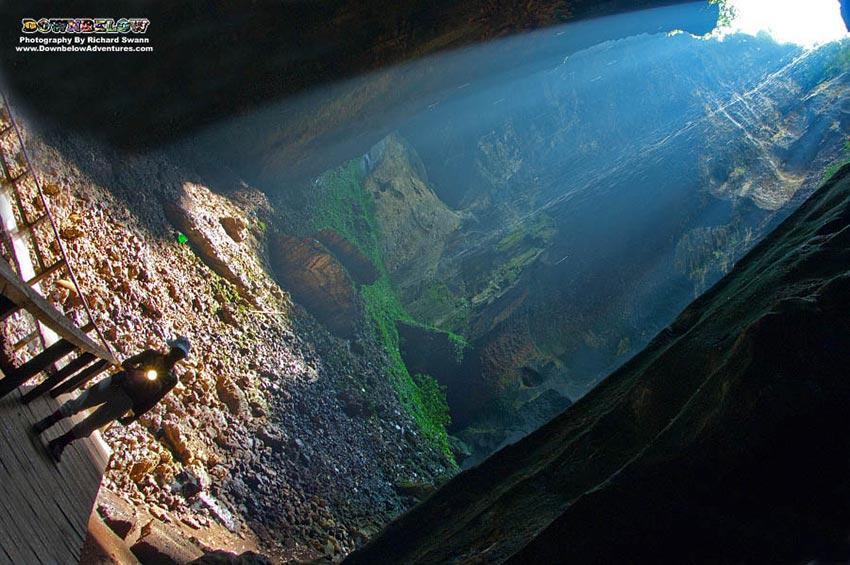 3D2N Kinabatangan River Safari