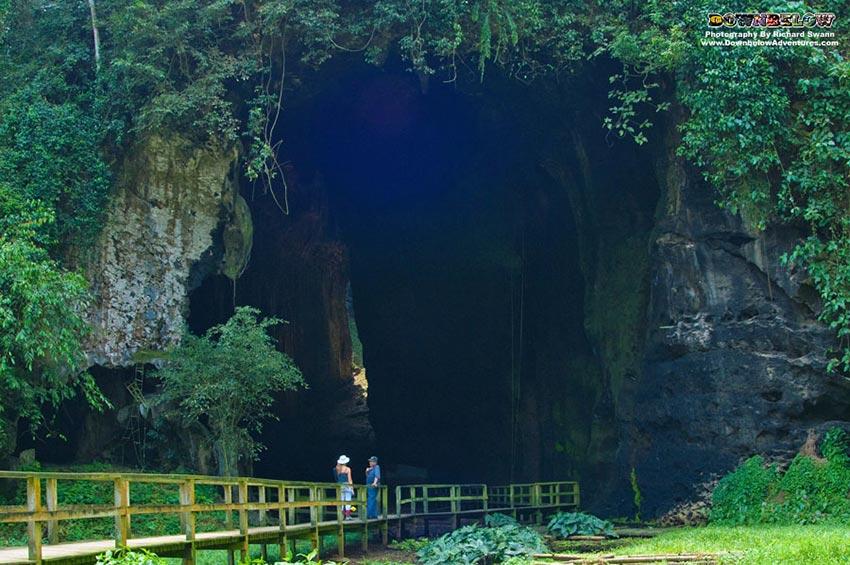 Gomantong Caves Sandakan