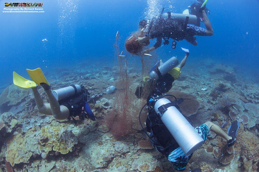 Dive Against Debris Net Removal