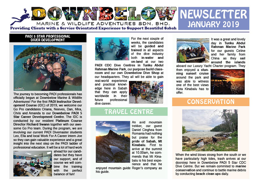 January 2019 Monthly Newsletter