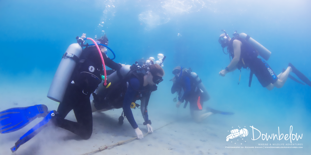 Professional PADI Dive Instructors in Sabah Borneo by Down Below Adventures